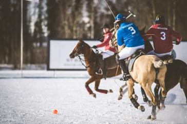 Финальный турнир зимнего сезона поло на снегу