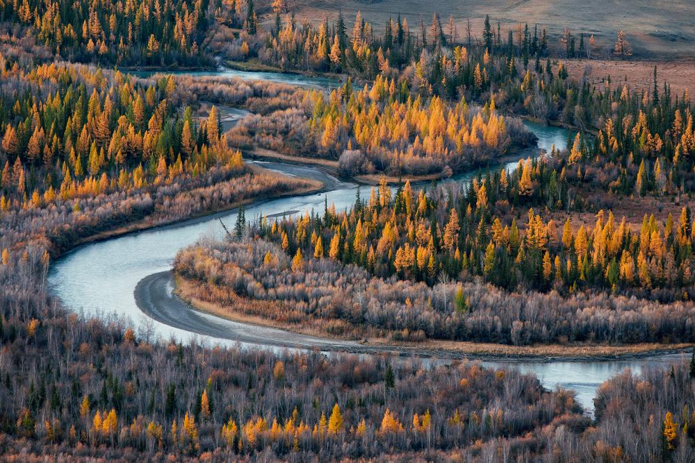 В Галерее Классической Фотографии откроется выставка фотографов дикой природы NATURE PHOTO EXP